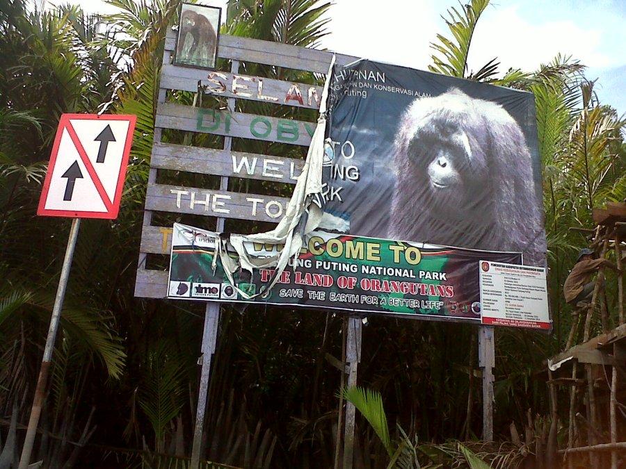 Banner Tanjung Puting